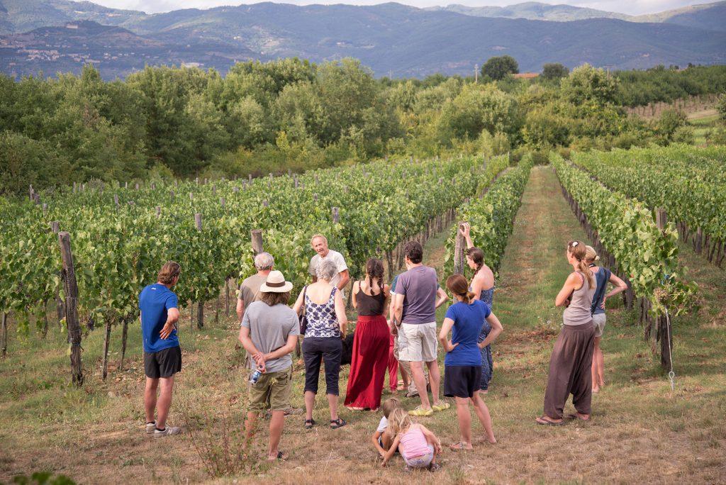 Toscane, Wijn bij pasta